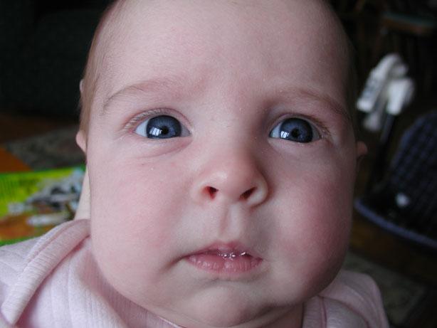 online baby photo book